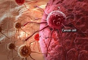 cbd oil cancer