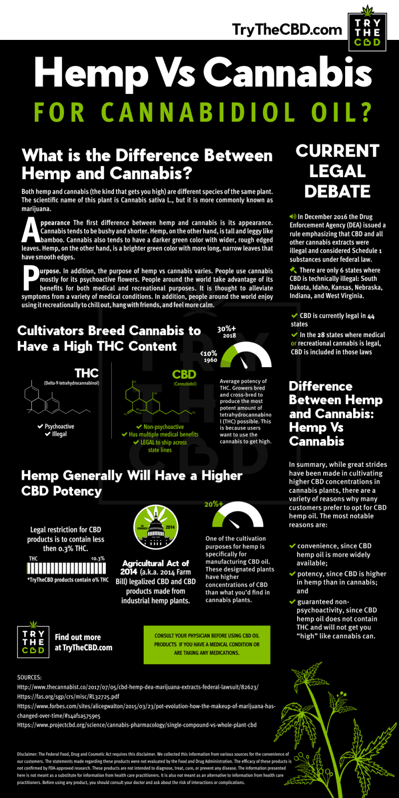 Hemp vs Cannabis Similarities and Differences