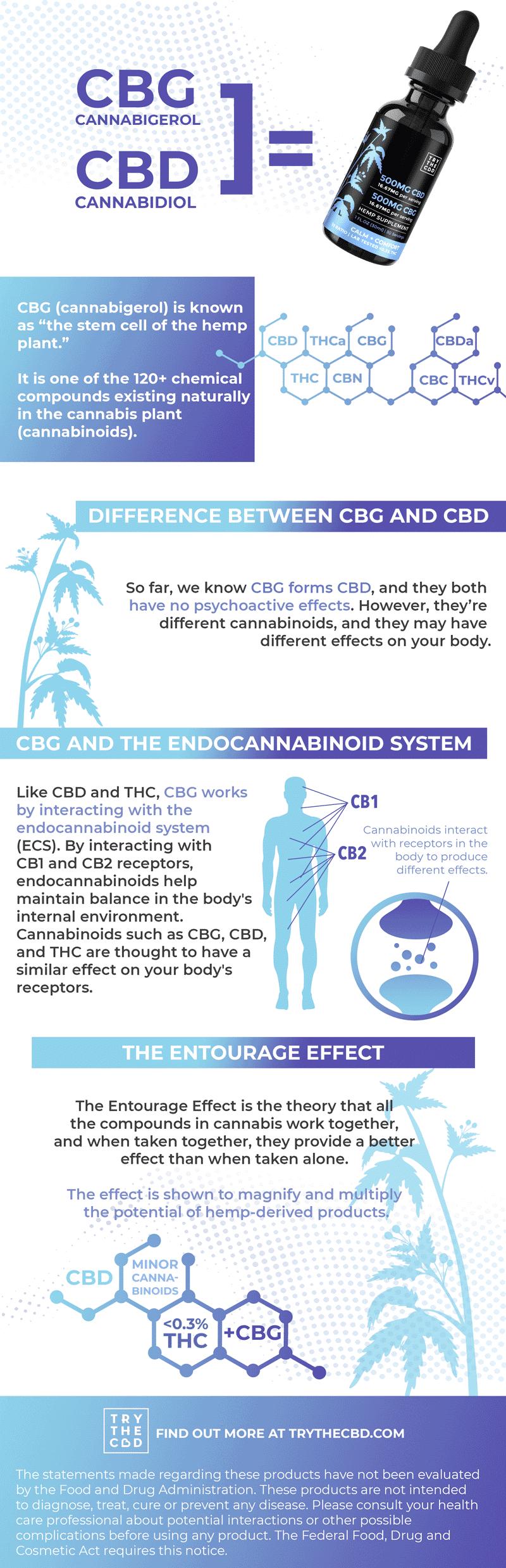 CBG + CBD Oil Infographic