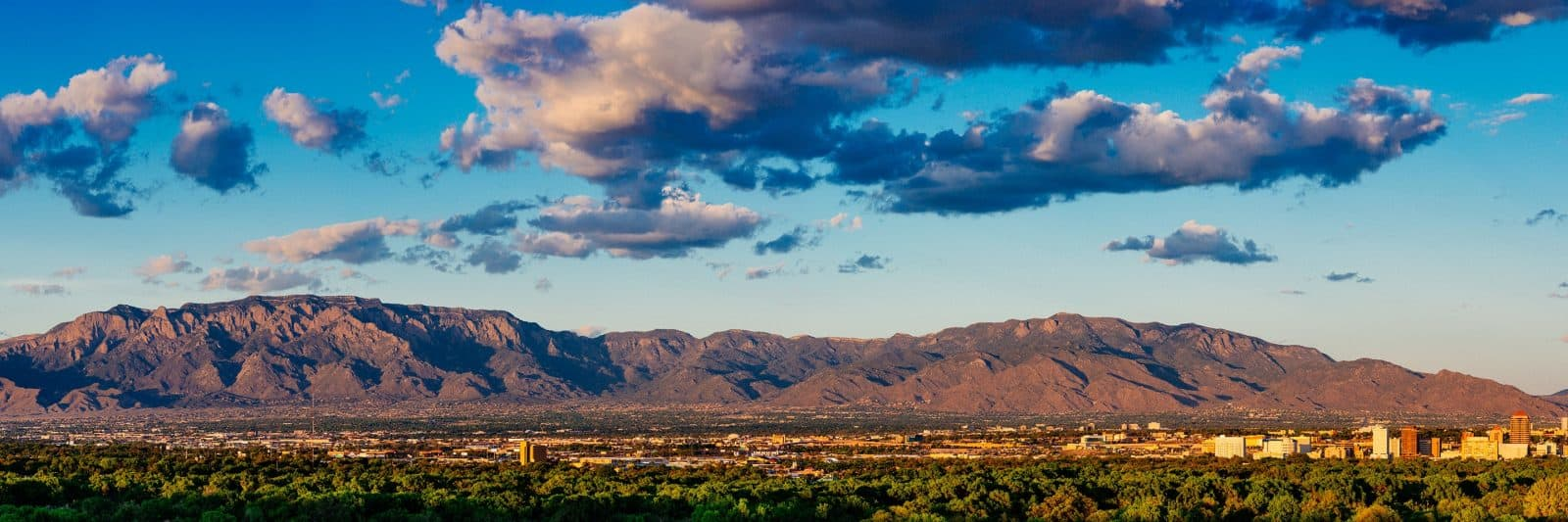 Where To Buy CBD in New Mexico